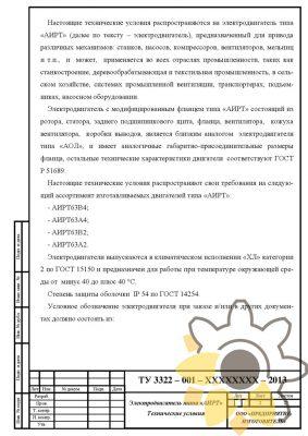 Технические условия на асинхронный электродвигатель стр.2