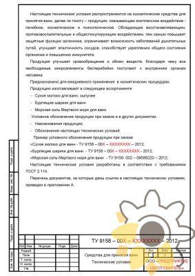 Технические условия на средства для принятия ванн стр. 2